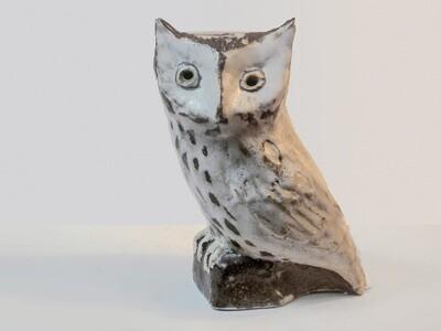 Vinathe Screech Owl Design Prototype