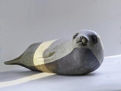 Antarctic Seal, Vintage Prototype in rare natural brown