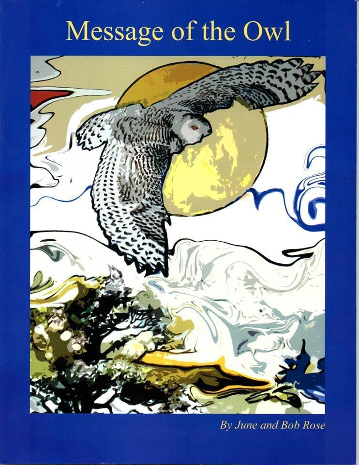 Message Of The Owl
