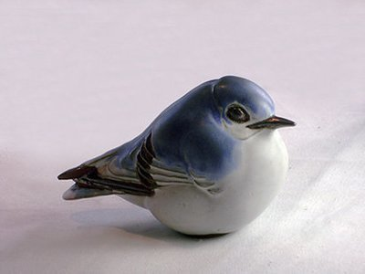 Western Mountain Bluebird, Large , 1st