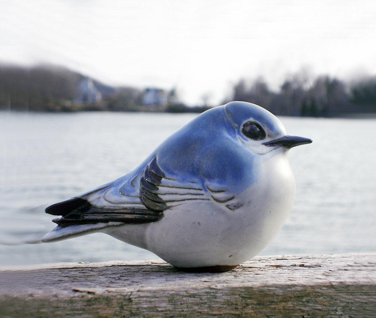 Western Mountain Bluebird, Second Quality