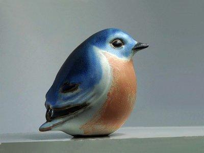 Eastern Bluebird, Round