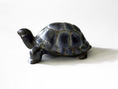 Turtle. B;ue