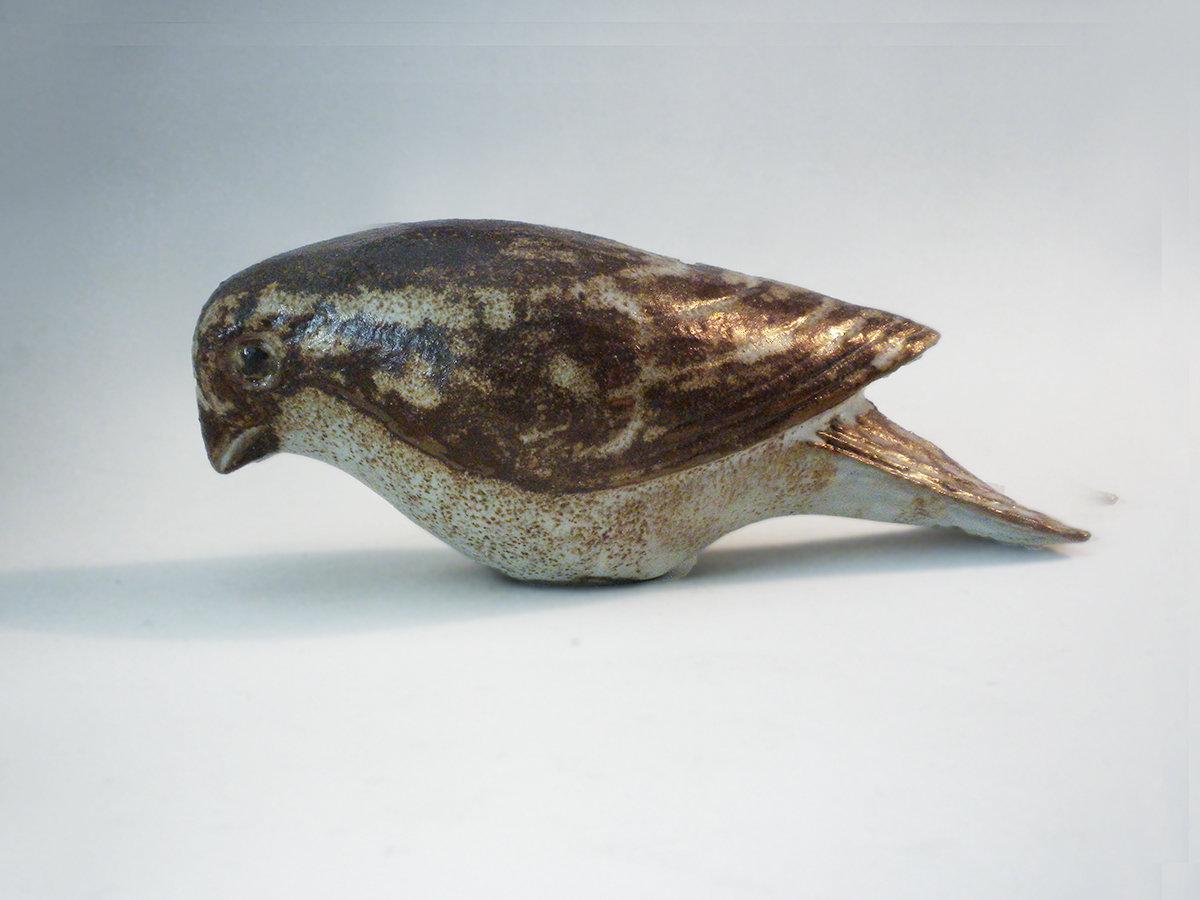 Grosbeak in natural brown