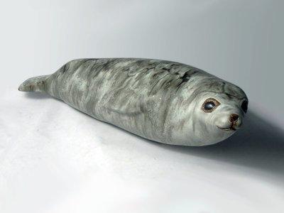 Antartic Seal