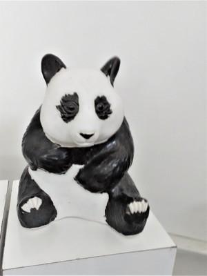 Panda, 2nd
