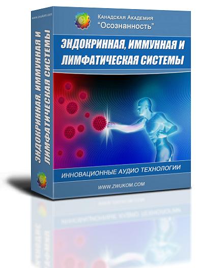 """Аудио настрой по оздоровлению """"Эндокринная, иммунная и лимфа системы"""" (программа для мужчин) 00033"""