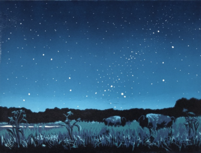 Prairie Sky At Night