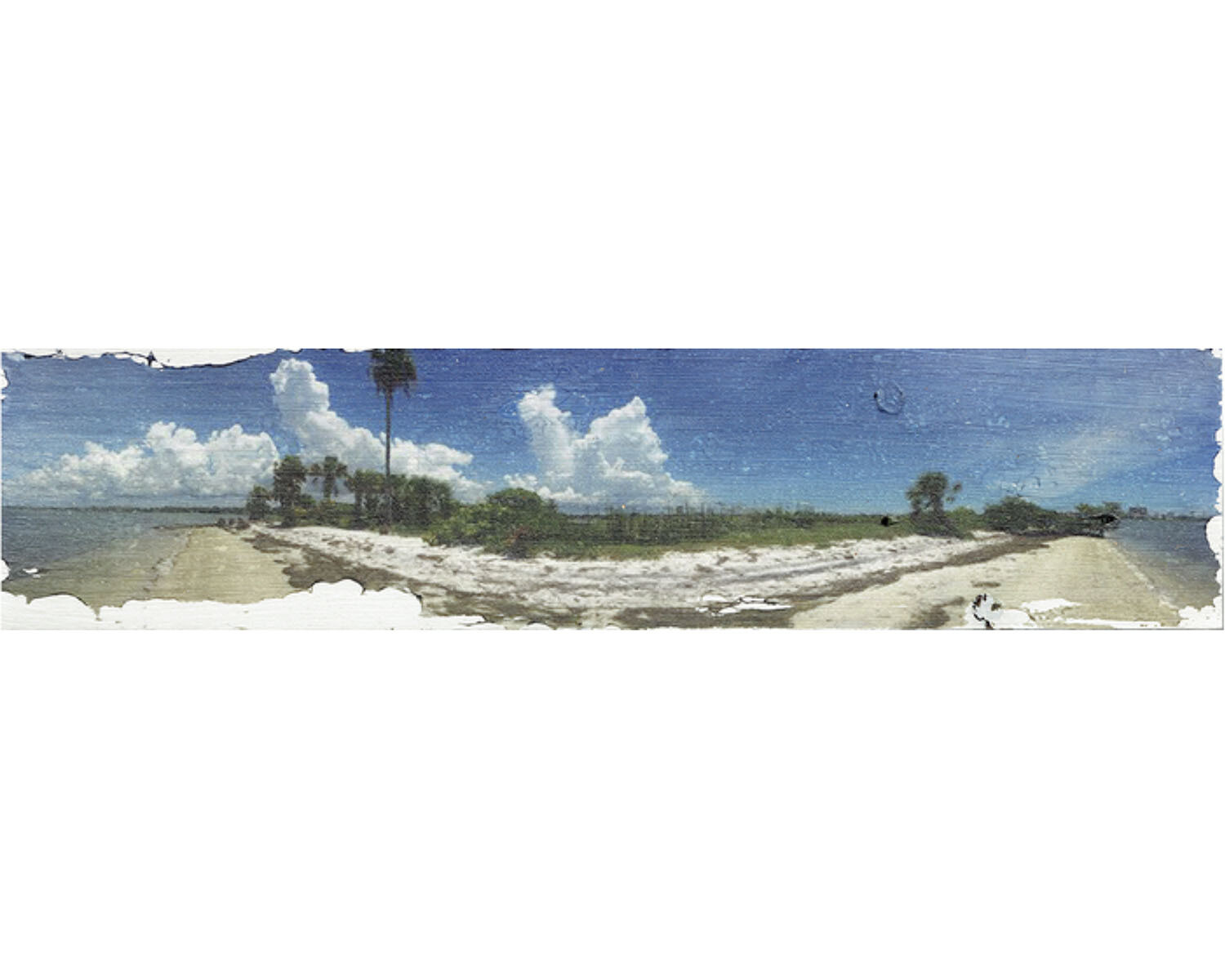 Intracoastal Spoil Island, Clearwater, Florida
