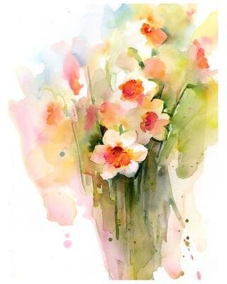 Narcissus Impressions