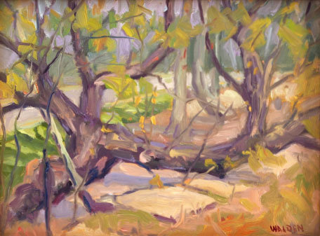 Woodland Interior 5