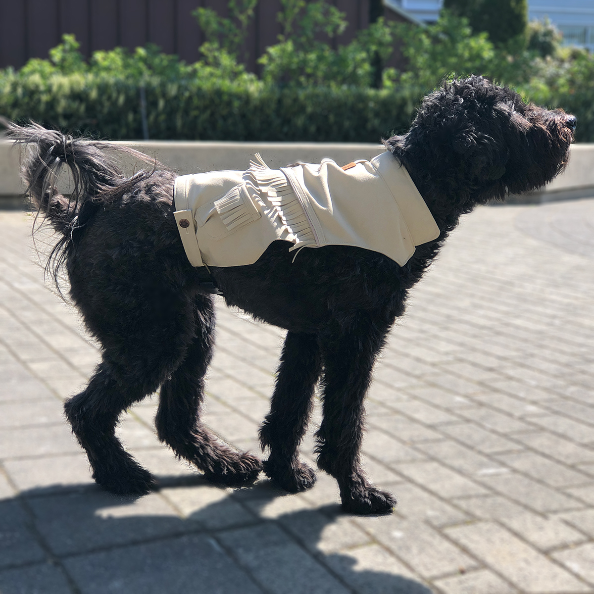 The Rawhide Vest and Harness 00027