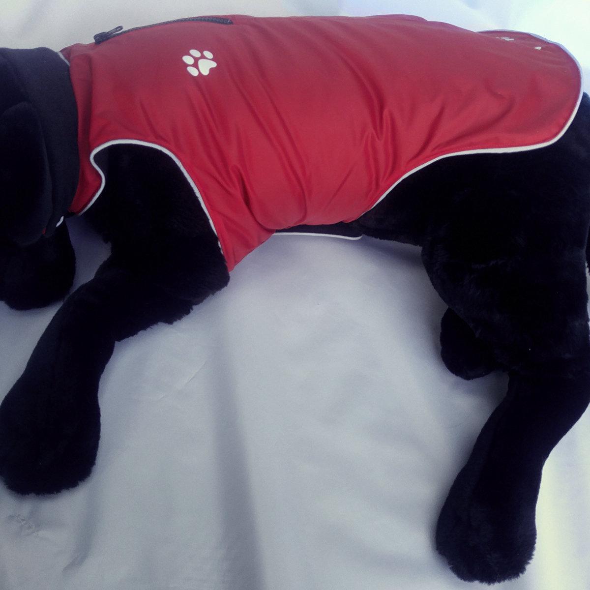 The Slicker - waterproof dog coat