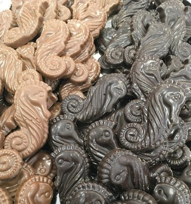 F - Chocolate Sea Horses.  Peanut and Gluten Free. 60 to a Lb.