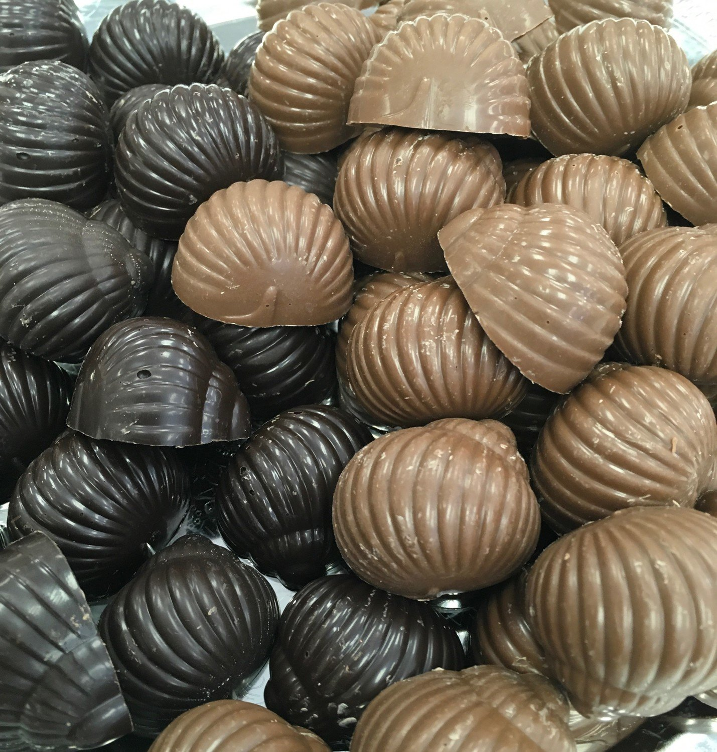 F - Chocolate Seashells.  Peanut and Gluten Free. 32 to a Lb.ss
