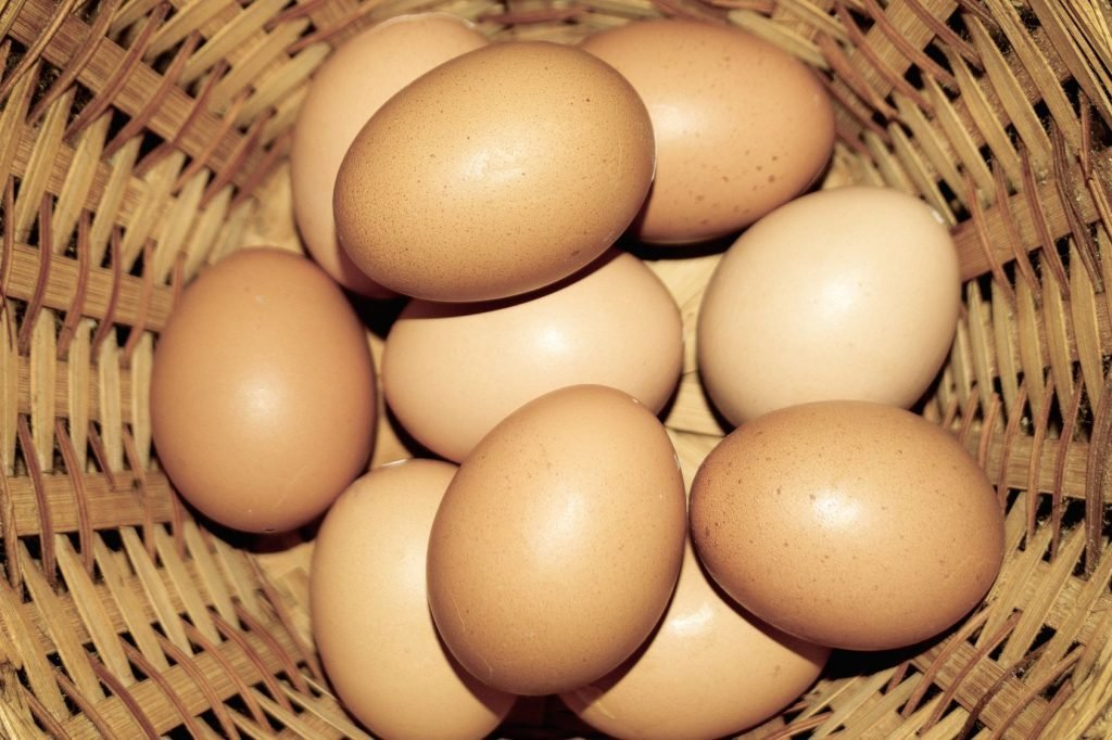 Farm Fresh Eggs P-E18-0000