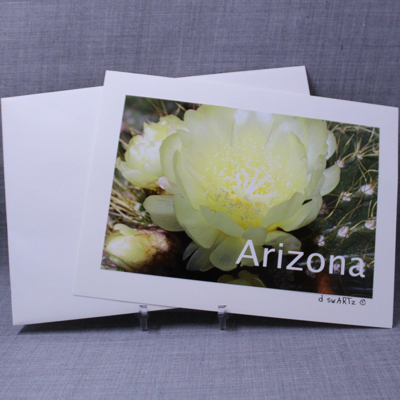 Photo Greeting Card- Blank Inside