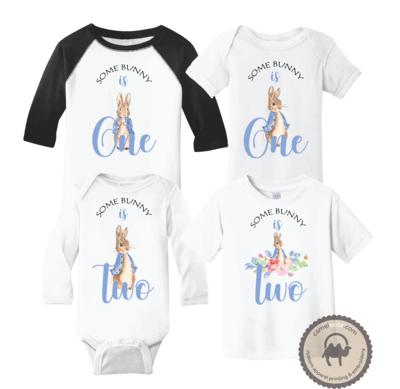Peter Rabbit Shirt - Peter Rabbit Baby Toddler Birthday Shirt