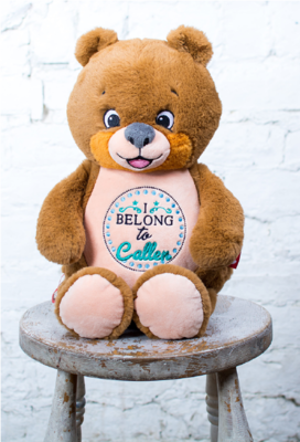 Custom Embroidered Bear Cubbie - Signature Bear
