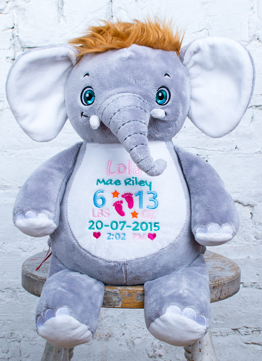 Custom Embroidered Elephant Cubbie - Olliephant Elephant