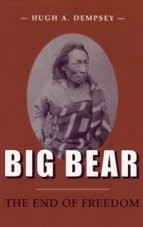 Big Bear: The End of Freedom