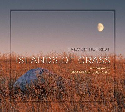 Islands of Grass