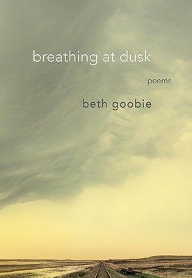 breathing at dusk: poems