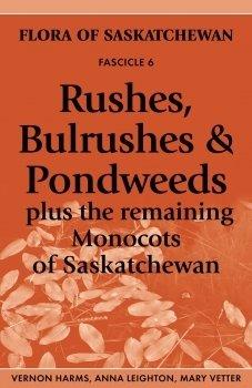 Rushes, Bulrushes & Pondweeds: Plus the Remaining Monocots of Saskatchewan 00001670
