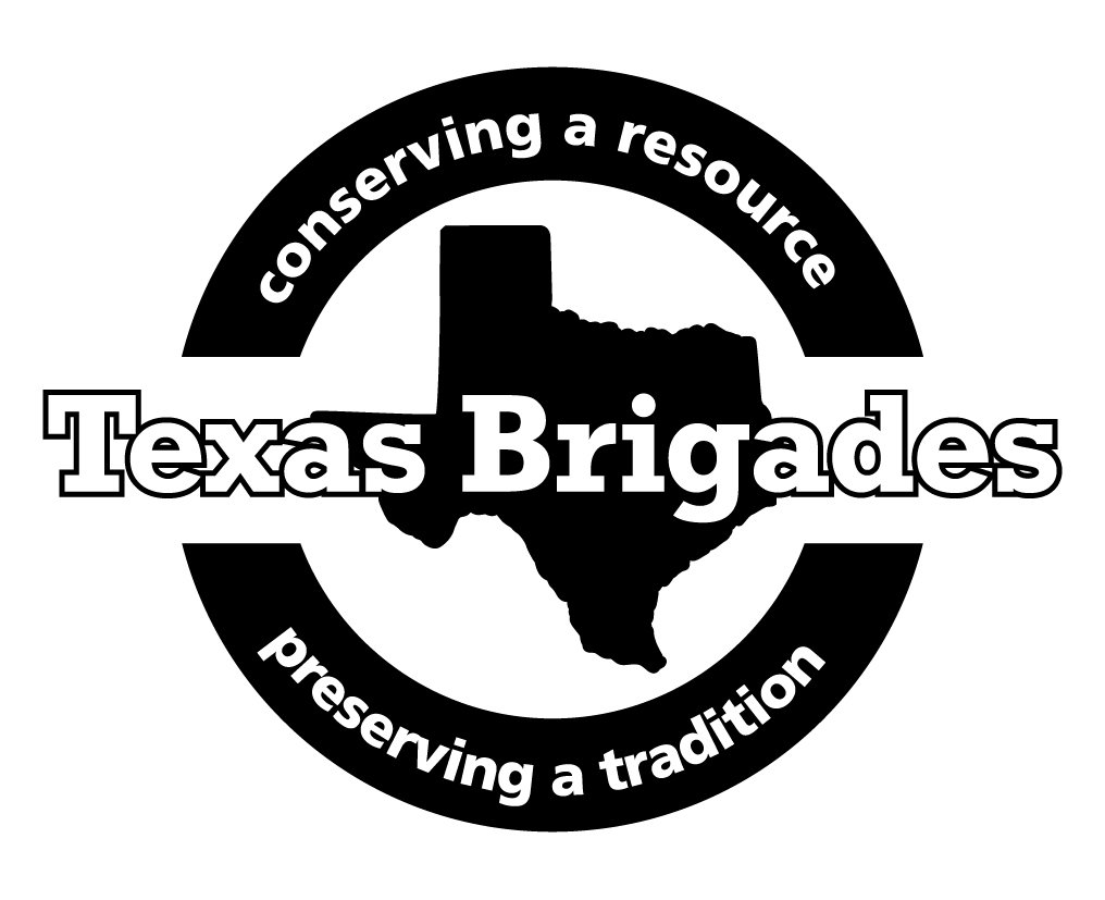 "Texas Brigades Logo 4"" Decal 00002"