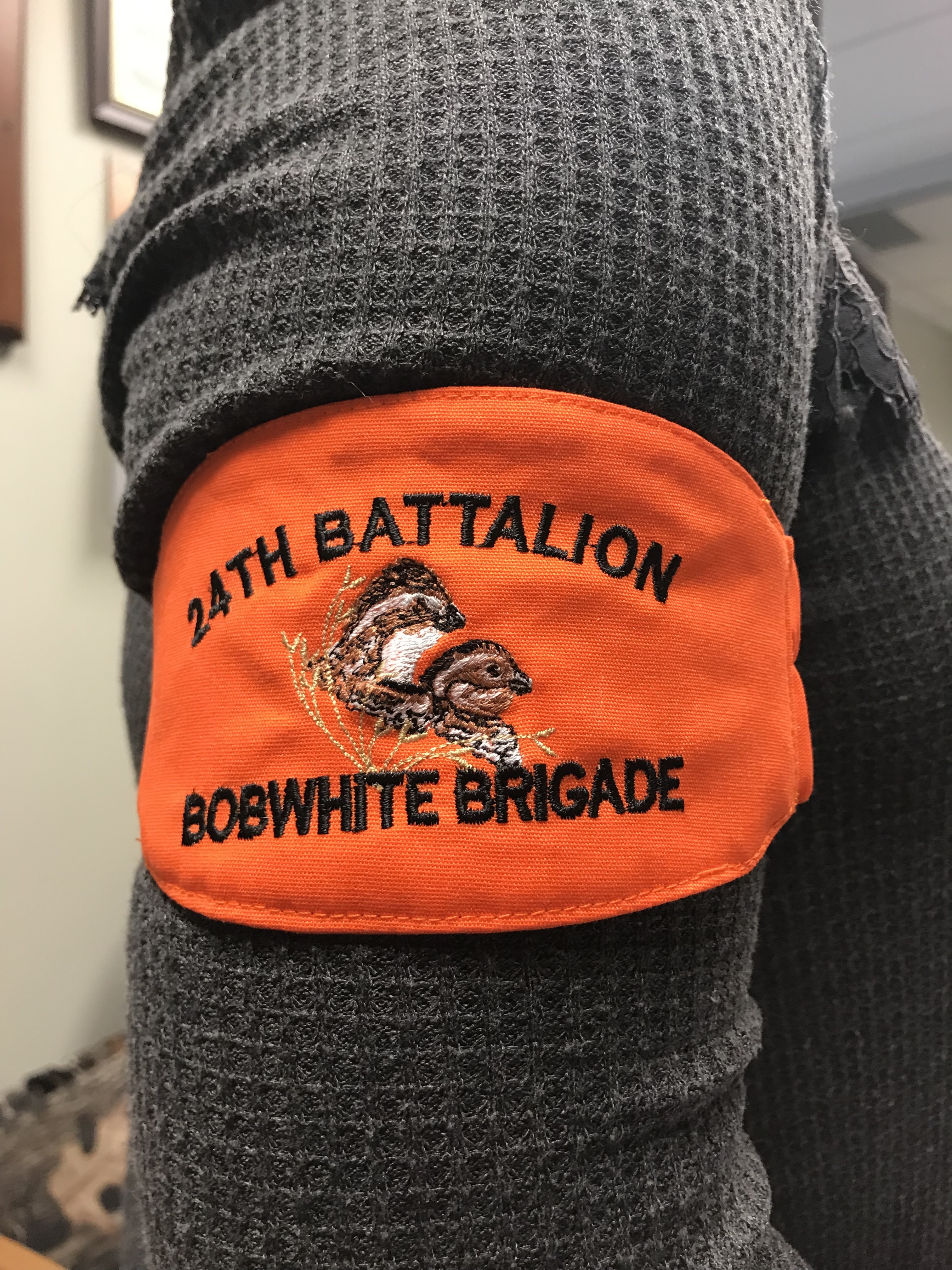 Rolling Plains Bobwhite Brigade 24th Battalion Arm Band