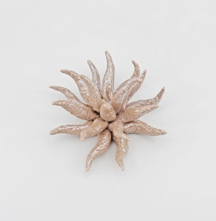 Bomboniera Anemone chiuso piccolo garibaldi *prodotto artigianale* Pz.1