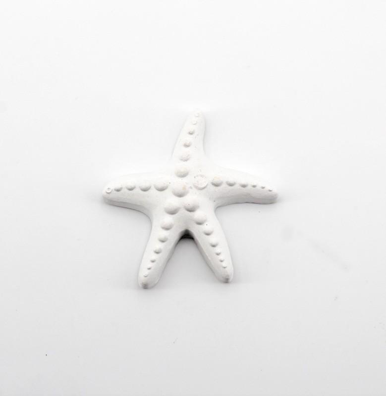 Bomboniera gessetto stella marina reflect Pz. 10