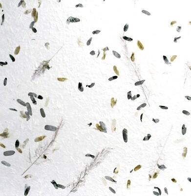 Carta gelso con inserti vegetali 55 x 80 Pz.1