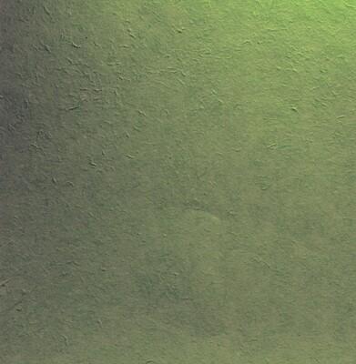 Carta gelso verde scuro 65 x 90 Pz.1