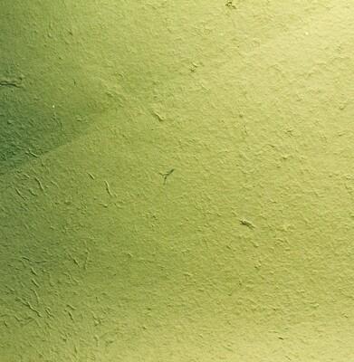 Carta gelso verde 65 x 90 Pz.1