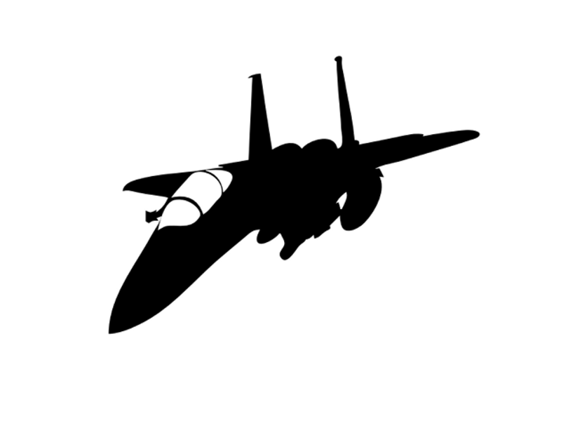 Fighter Vinyl Military Decal