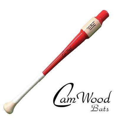 Youth Baseball Sweet Spot Bat