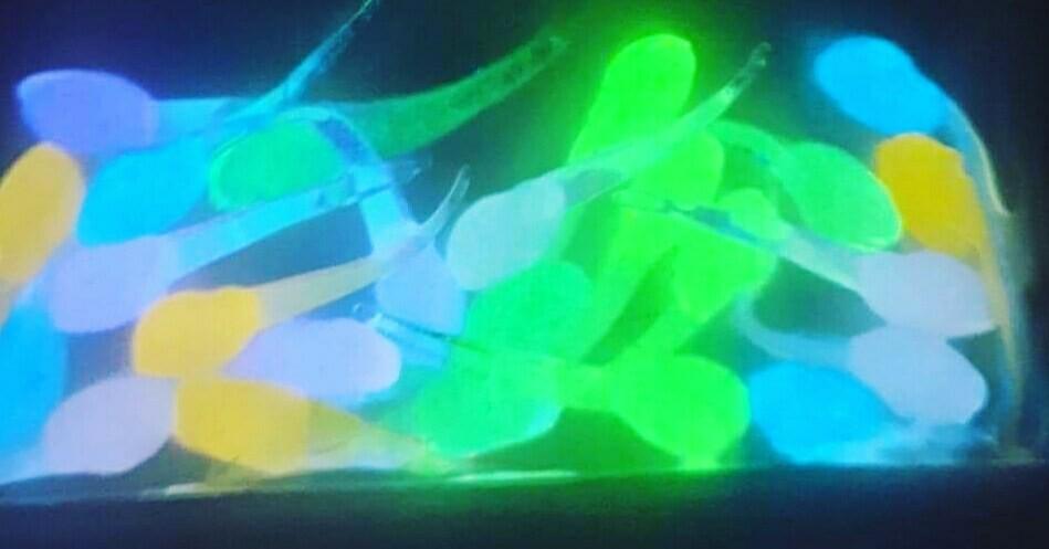 "glo sampler pack of 1"" Nanos 4 of ea color/20 baits"