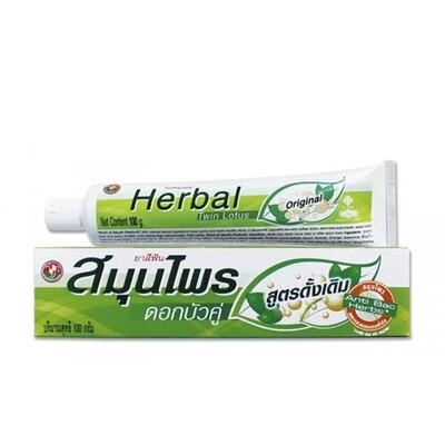 Зубная паста TWIN LOTUS с травами оригинальная, 40 гр