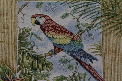 Pillow Aloha Parrot (Sold By Frames/ Not Yards)