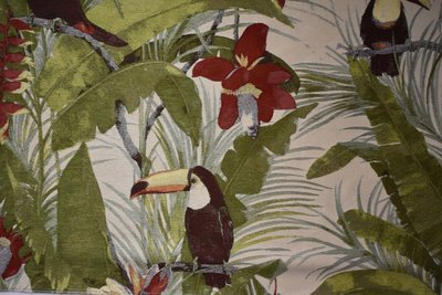Birds of Paradise-Island Green