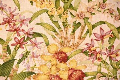 Wild Orchid-White