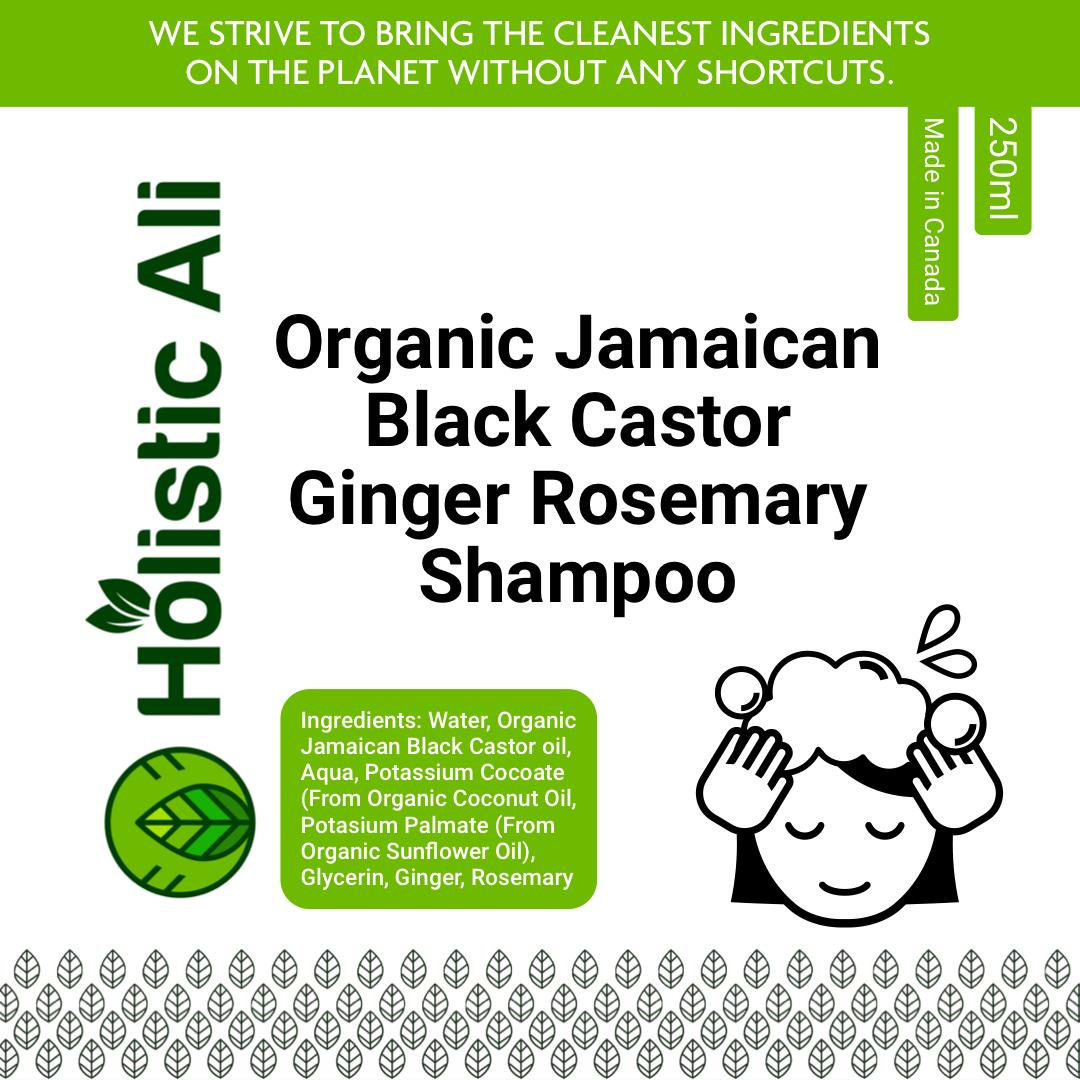 Organic Jamaican Black Castor Ginger Rosemary Shampoo 2 bottles 250ml each