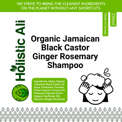 Organic Jamaican Black Castor Ginger Rosemary Shampoo 2 bottles 250ml each