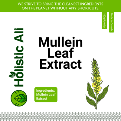 Mullein Leaf Extract Powder 100g, Organically Grown