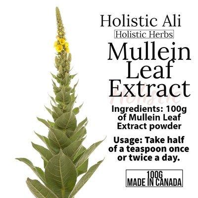 Mullein Leaf Extract Powder 100g, Organically Grown