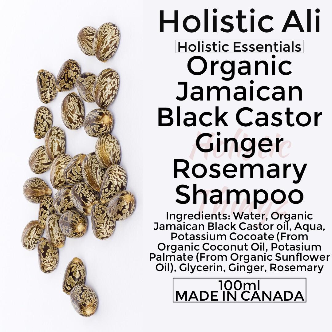 Organic Jamaican Black Castor Ginger Rosemary Shampoo 3 bottles 100ml each