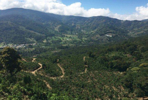 Costa Rica Doña Maria