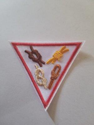Knots Triangle ***Pre-Order***