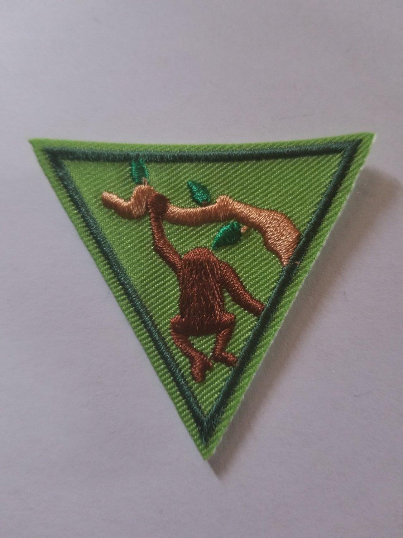 Primates Triangle